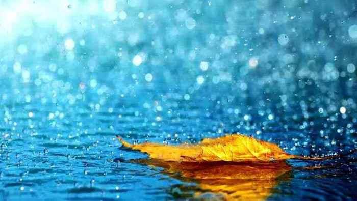 Hujan : Hanya Setitik Air