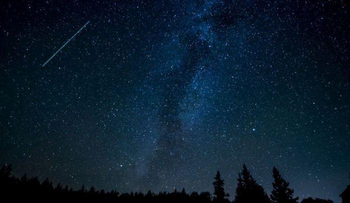 Selamat Malam Bintang