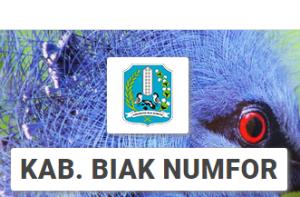 Pendaftaran Online PPDB SMP Negeri Kabupaten Biak Numfor