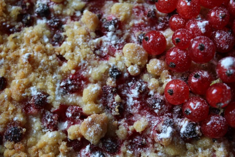 rips og skogsbær pai