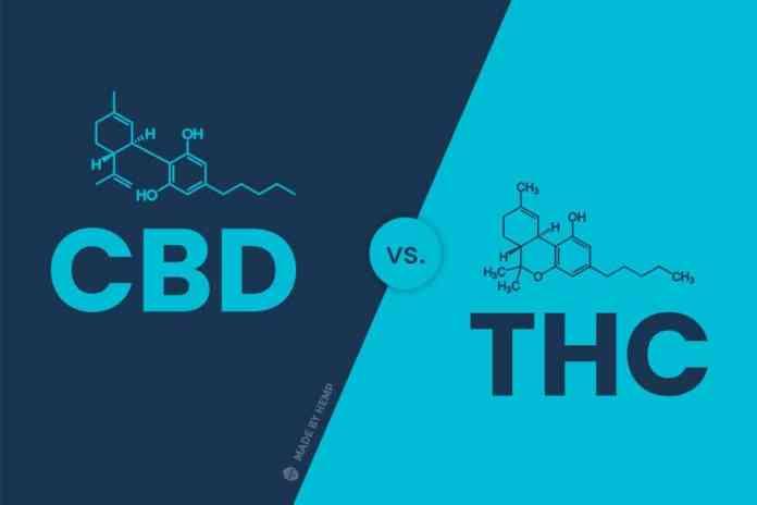 cbd vs thc compound