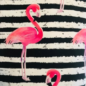 Flamingo stripes