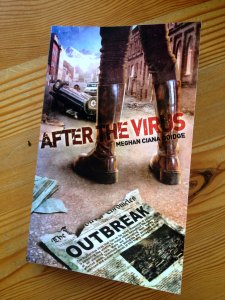 After The Virus paperback