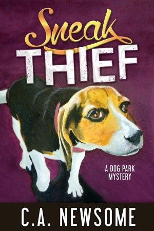 Sneak Thief  Book Cover