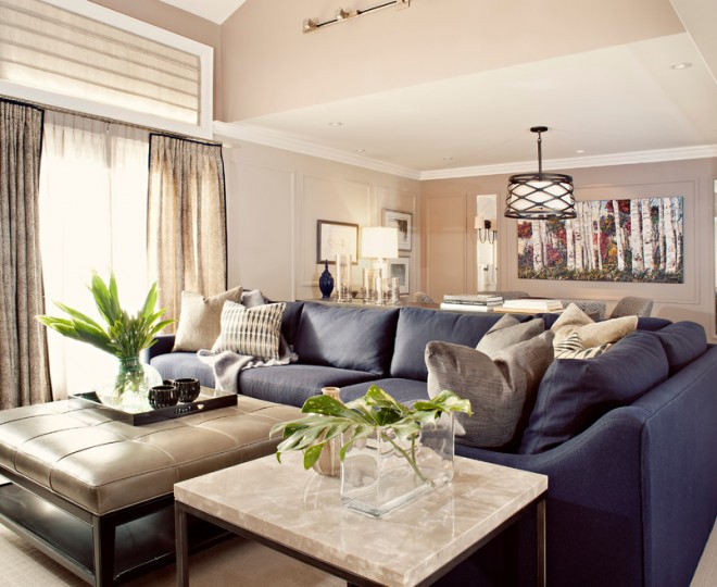 Navy Blue Sofa Living Room Transitional With Sunburst Mirror Part 66