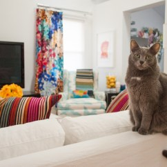 Window Treatment Ideas Small Living Room Valances Impressive Cat Perch In Eclectic With ...