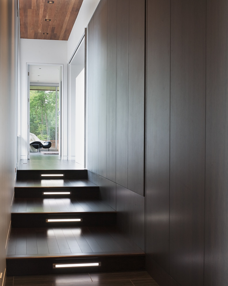 Splashy Bega Lighting In Spaces Contemporary With Corridor   Outside Steps For House   Modern   Fancy   House Construction   Makeover   Small House