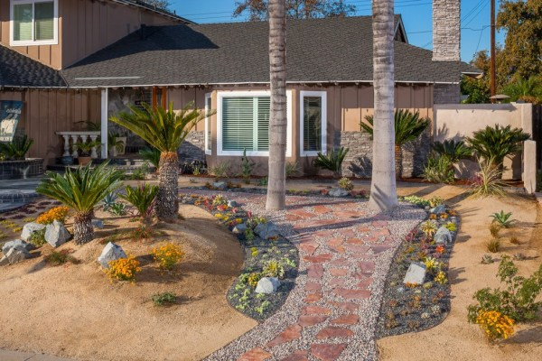 desert landscape ideas with softscape