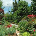 front yard fences spaces chicago with