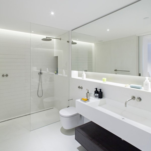 Wall Mounted Handrail Bathroom Contemporary With Mirror
