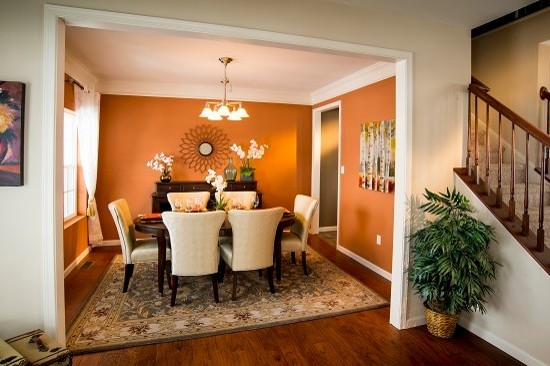 Good Looking Burnt Orange Wall With Dining Room Paint Ideas