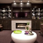 calgary tv cabinets with doors black fireplace inserts basement transitional and dark wood carpet