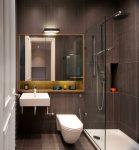 Wonderful Bathroom Linen Cabinets Contemporary with Mirror Luxury Toilet