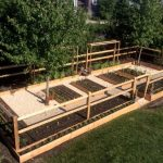 Splendid vegetable garden fence ideas Rustic Landscape in New York with and outdoors backyard grown