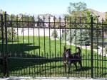 Glorious Wrought Iron Fencing Landscape Traditional with Ornamental Salt Lake City Fence Ideas Staircase