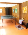Amazing Cool Ping Pong Family Room Rustic with Table