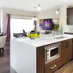 Pleasing Kitchen Drapes Pictures Kitchen Contemporary With Dishwasher In Island And Drum Shade