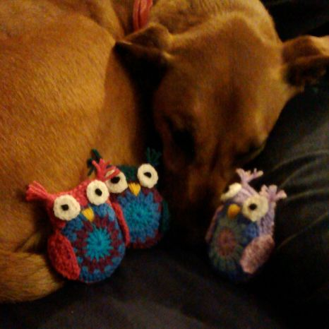 Alfie Owl and his friends.