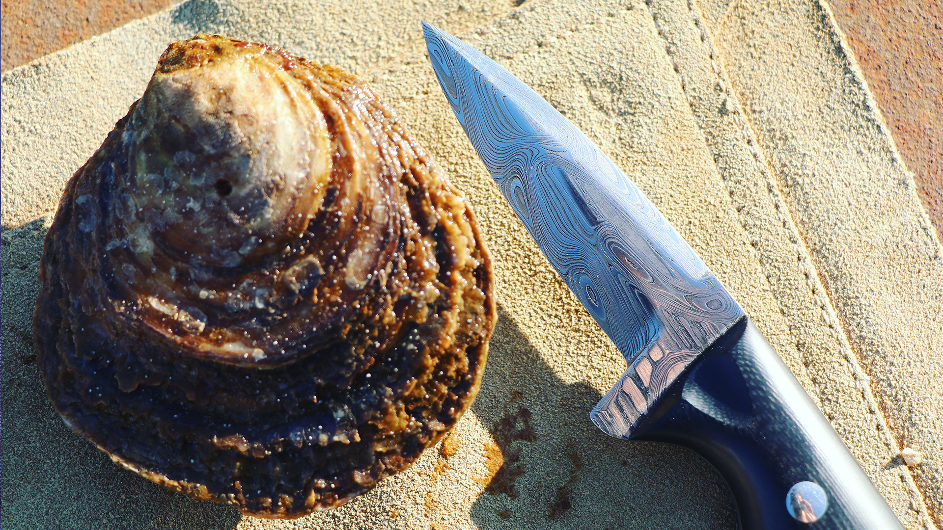 A damascus steel Oyster knife. This was the first handmade shucker of the ''Pearl'' type.
