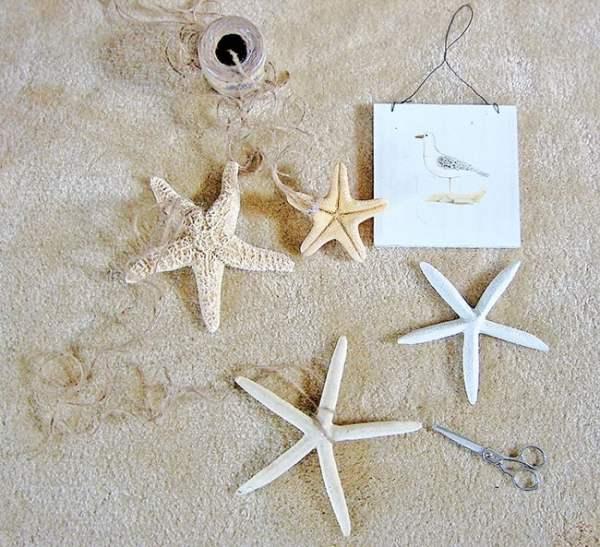 Starfish Vignette