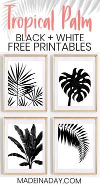 Black & White Tropical Palm Leaf Wall Art Printables ...