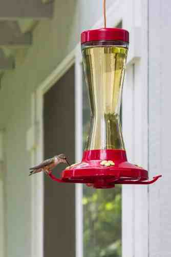 Make your own hummingbird food. It's easy, cheap and healthier for the birds! For the recipe and other helpful tips visit Made in a Pinch and follow us on Pinterest!1
