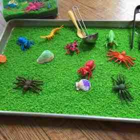 Sensory play: green 'grass'.  A fun indoor play activity!