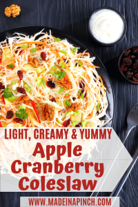 Cranberry apple coleslaw is the very best version of a traditional summer classic side dish. Grab our recipe on Made in a Pinch and follow us on Pinterest for more easy recipes!