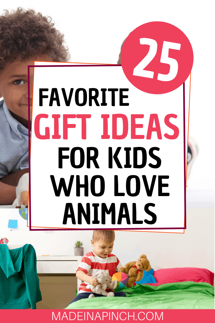 Pinterest Pin image for gifts for kids who love animals