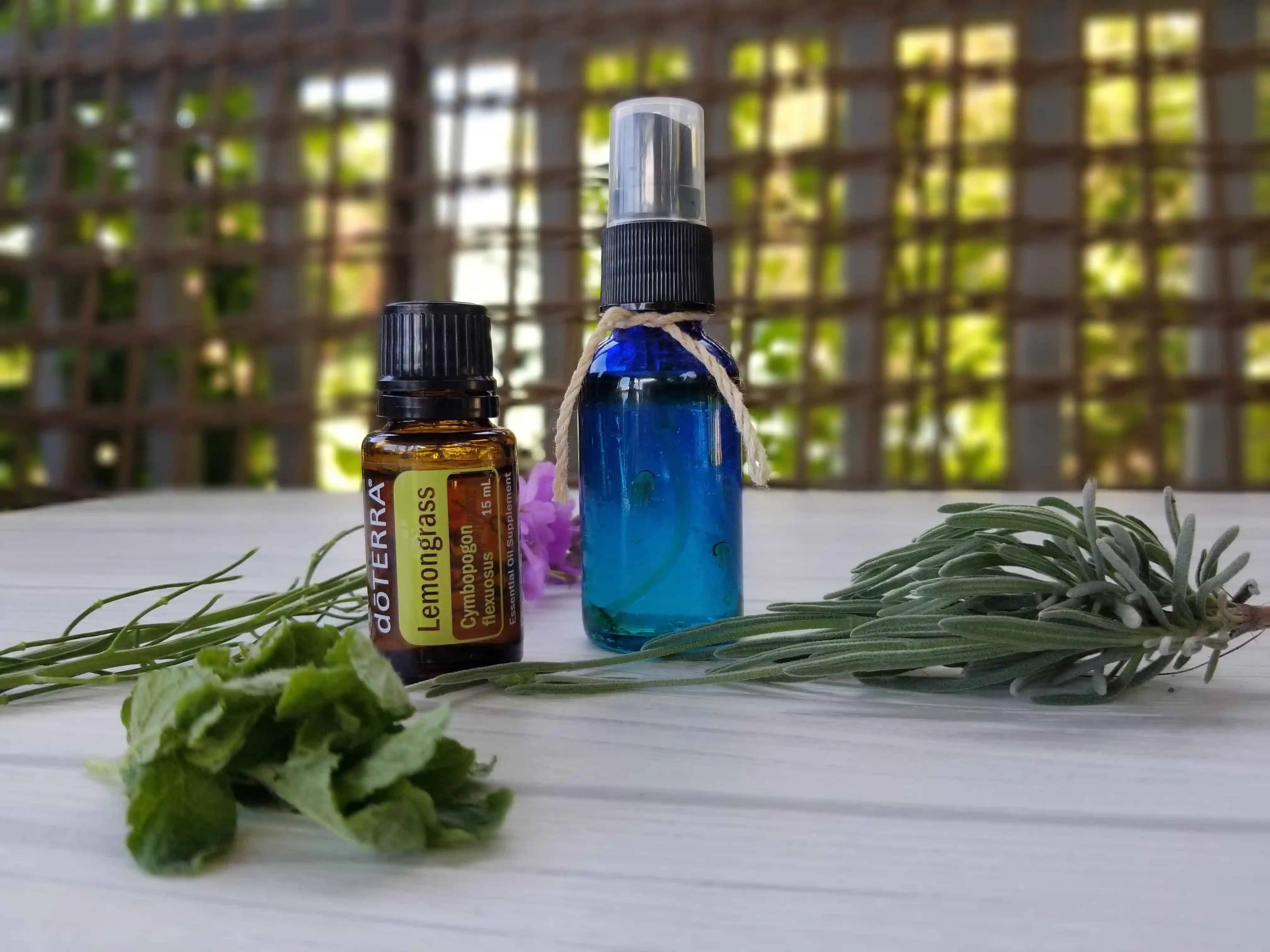 blue spray bottle with essential oil mosquito repellent, lemongrass essential oil bottle and greenery