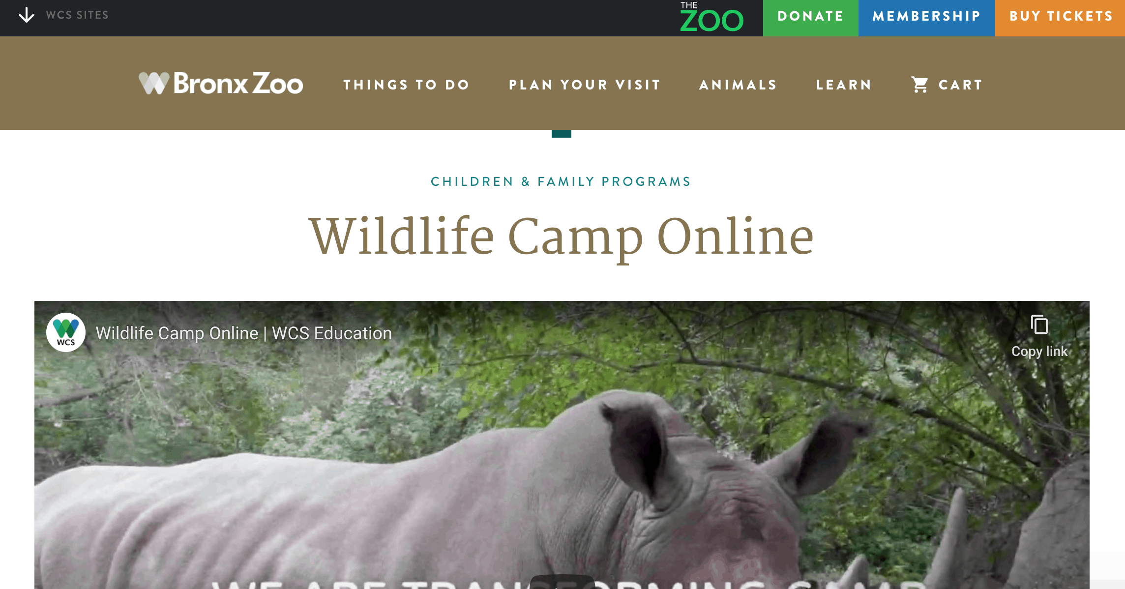 Bronx Zoo summer camp homepage