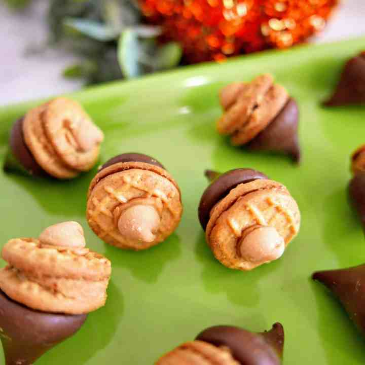 Peanut Butter Chocolate Acorn Treats