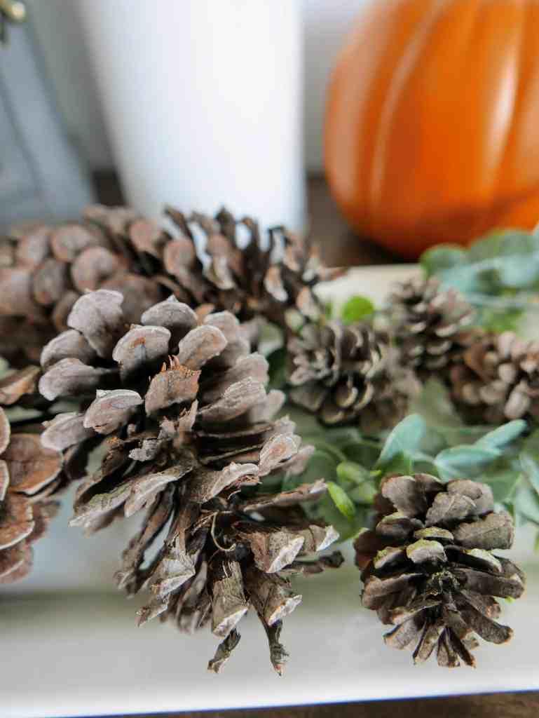 scented pine cones closeup