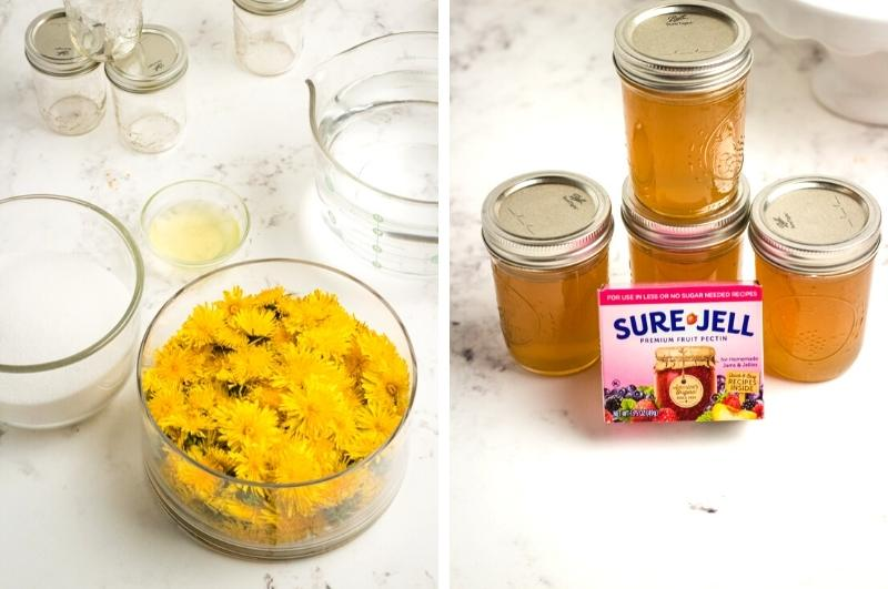 ingredients for making dandelion jelly