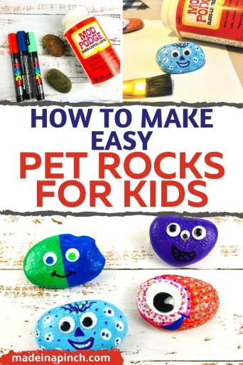 easy pet rocks craft for kids pin image