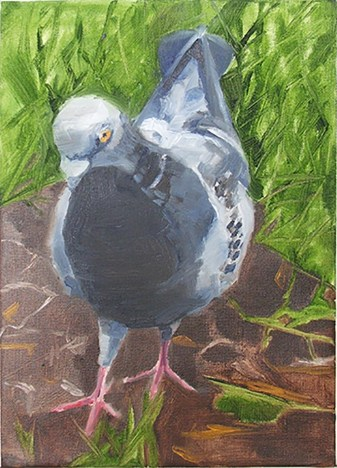 Joan Uloth - Pigeon on Hampstead Heath 5