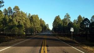Road To Greer