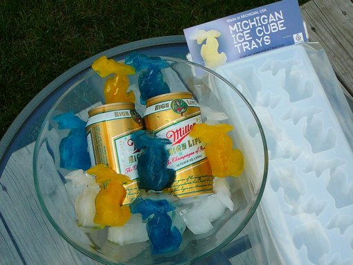 Michigan Ice Cubes