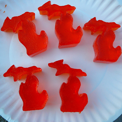 Michigan Shape Jello