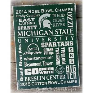 MSU ~ Michigan State University Word Art Sign