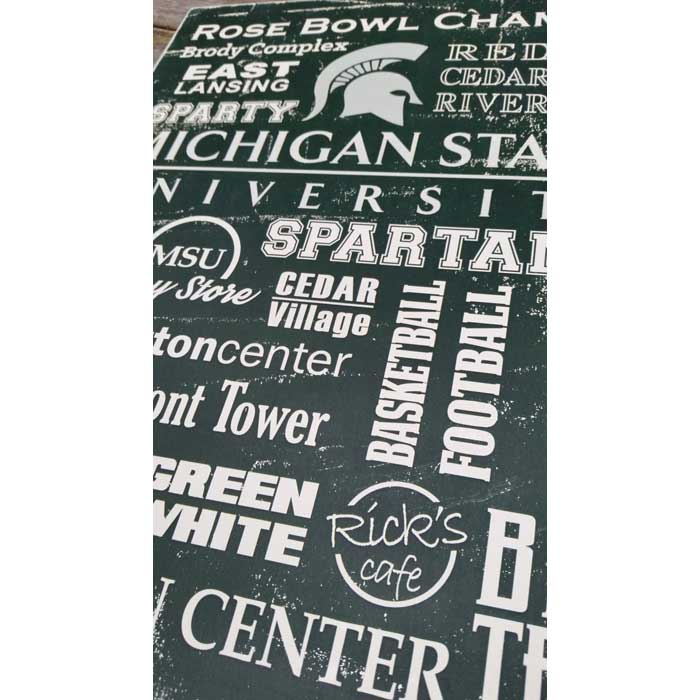 MSU Michigan State University