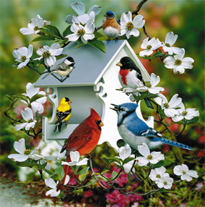 Back Yard Birds Giclee Print