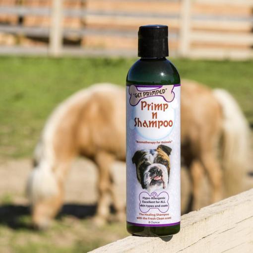 Primp n Shampoo for horses