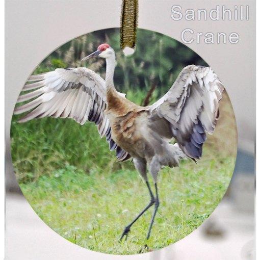 Glass Photo Suncatcher Ornament Sandhill Crane