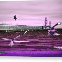 Mackinac Bridge Seagulls Canvas Print