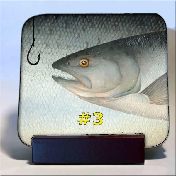 Michigan Fish Coaster #3