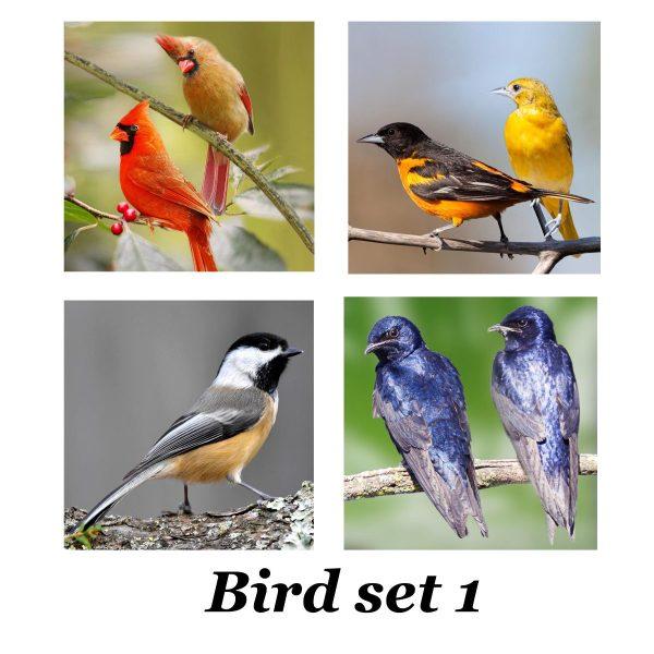 Bird set 1 for tiles coasters