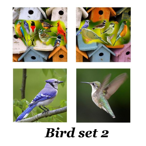 Bird set 2 for tiles coasters
