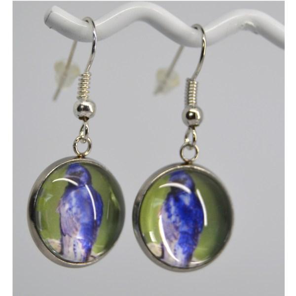 Purple martin Earrings