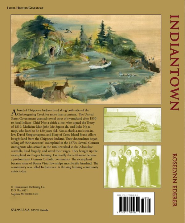 Indiantown Book Back Cover